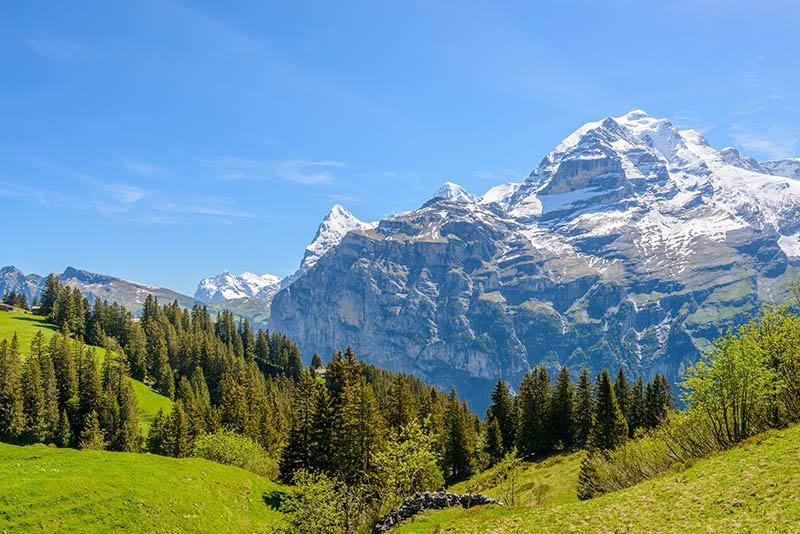 Tranquil-Mountain-Healing-Arts
